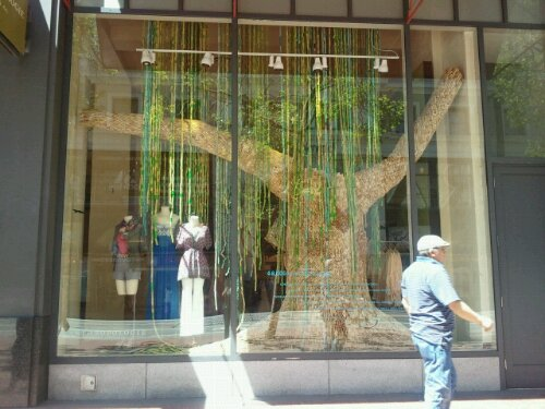 Window Dressing: Anthropologie